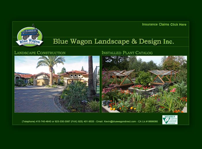 California Website Design Company Ca Web Design Company California Web Development Company